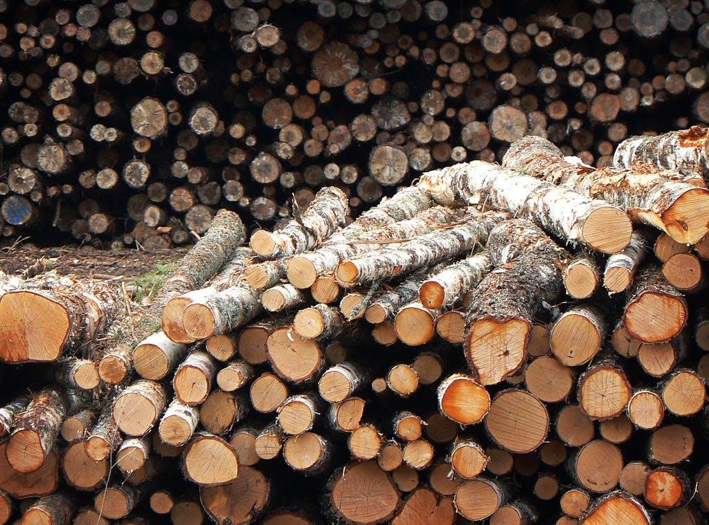 Pile of logs.