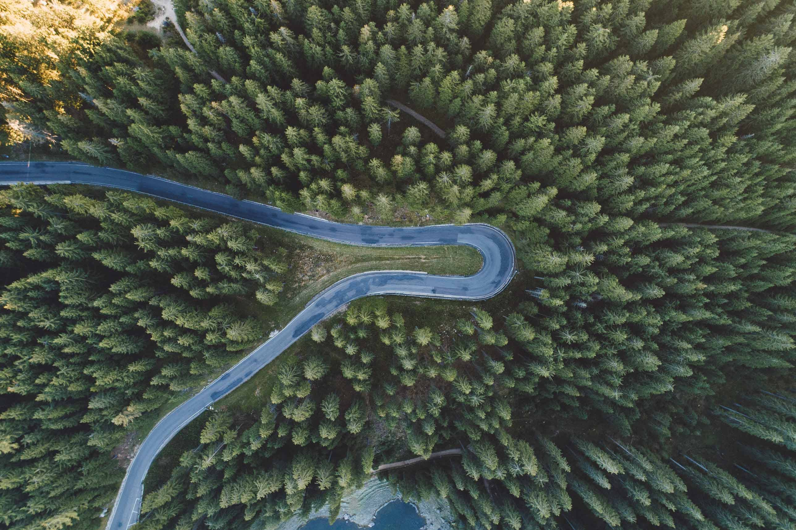 Via Carezza (SS241) & Latemarwald Forest Look Down