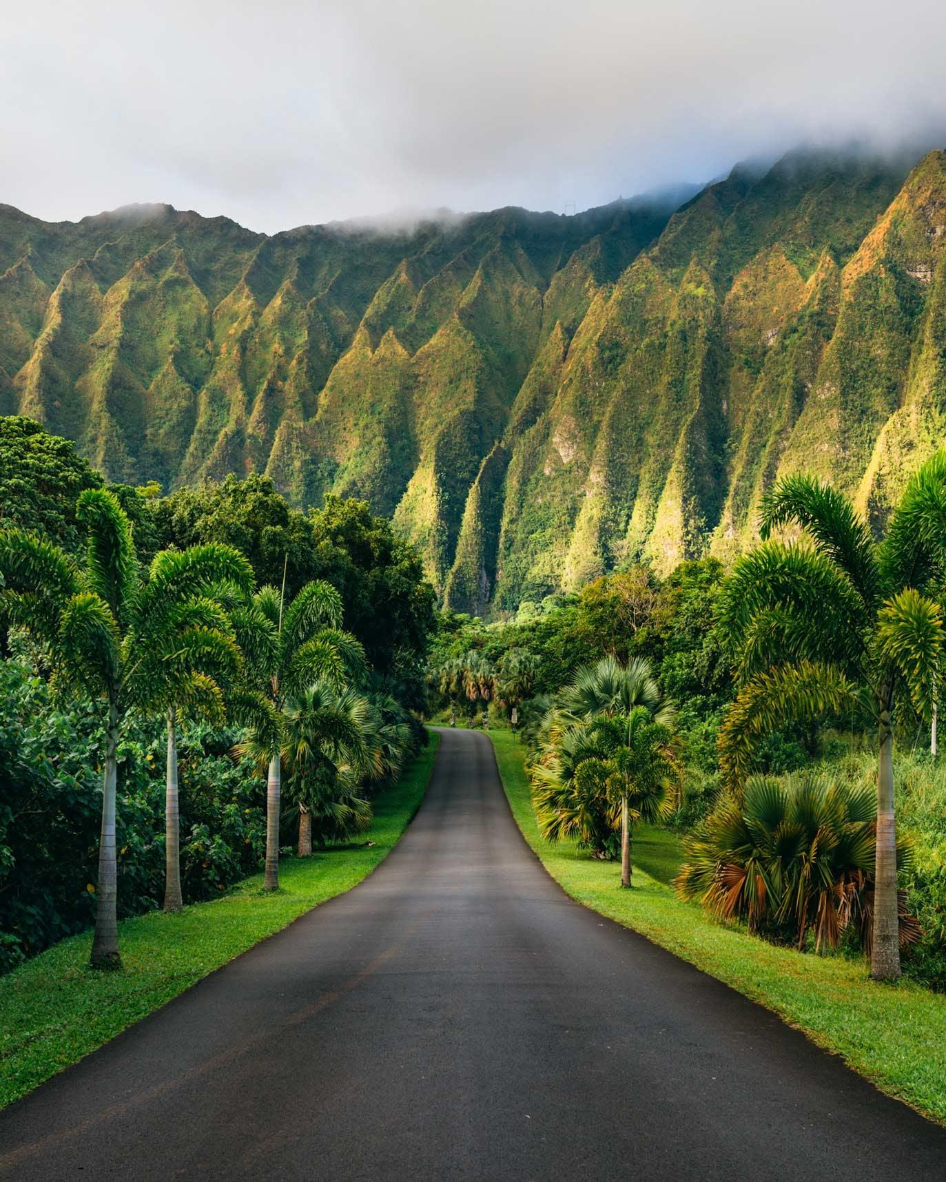 Park Access Road view of Ho'omaluhia Botanical Garden
