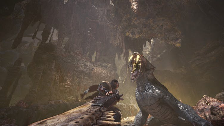 Capcom taking 'extra time' with Monster Hunter: World PC