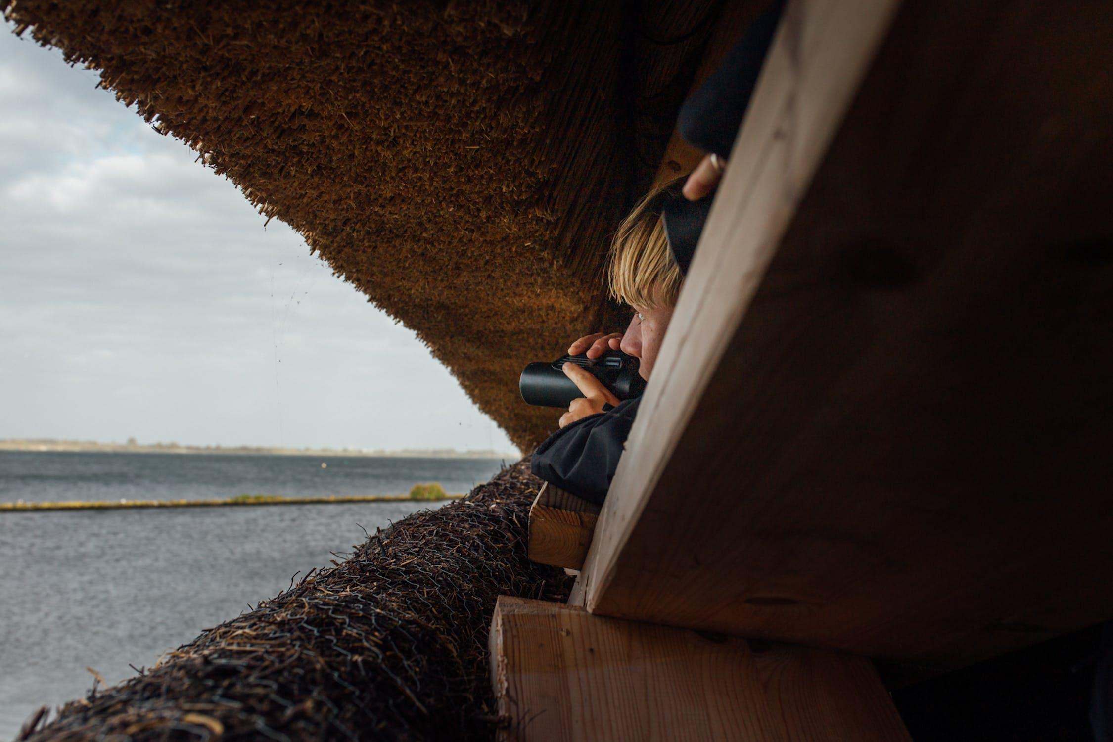 Feminist Bird Club NL - Geerte Piening - birding - Tij