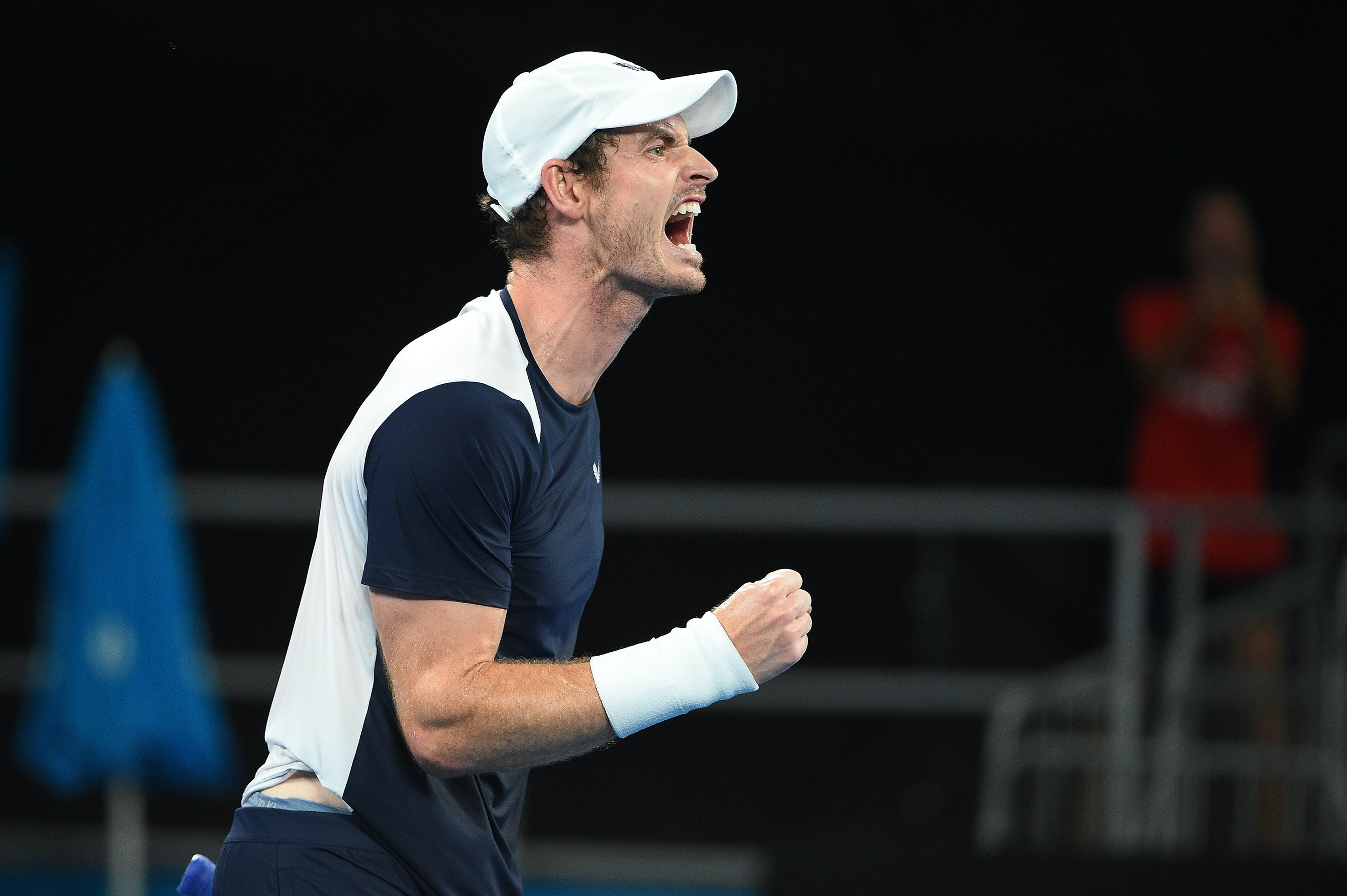 Andy Murray roaring at the Australian Open 2019