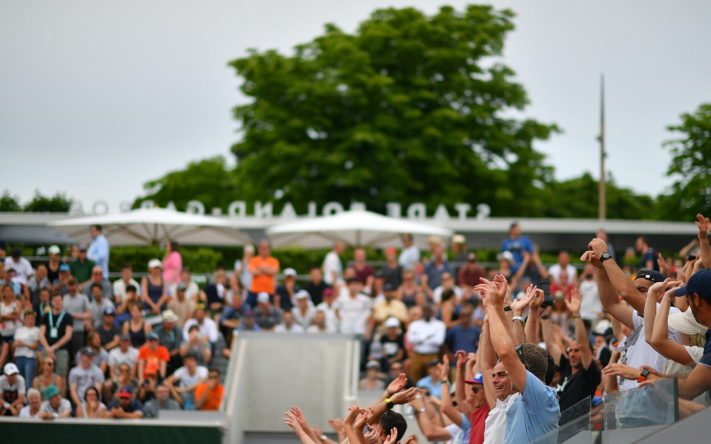 Public tribunes court 18 crowd
