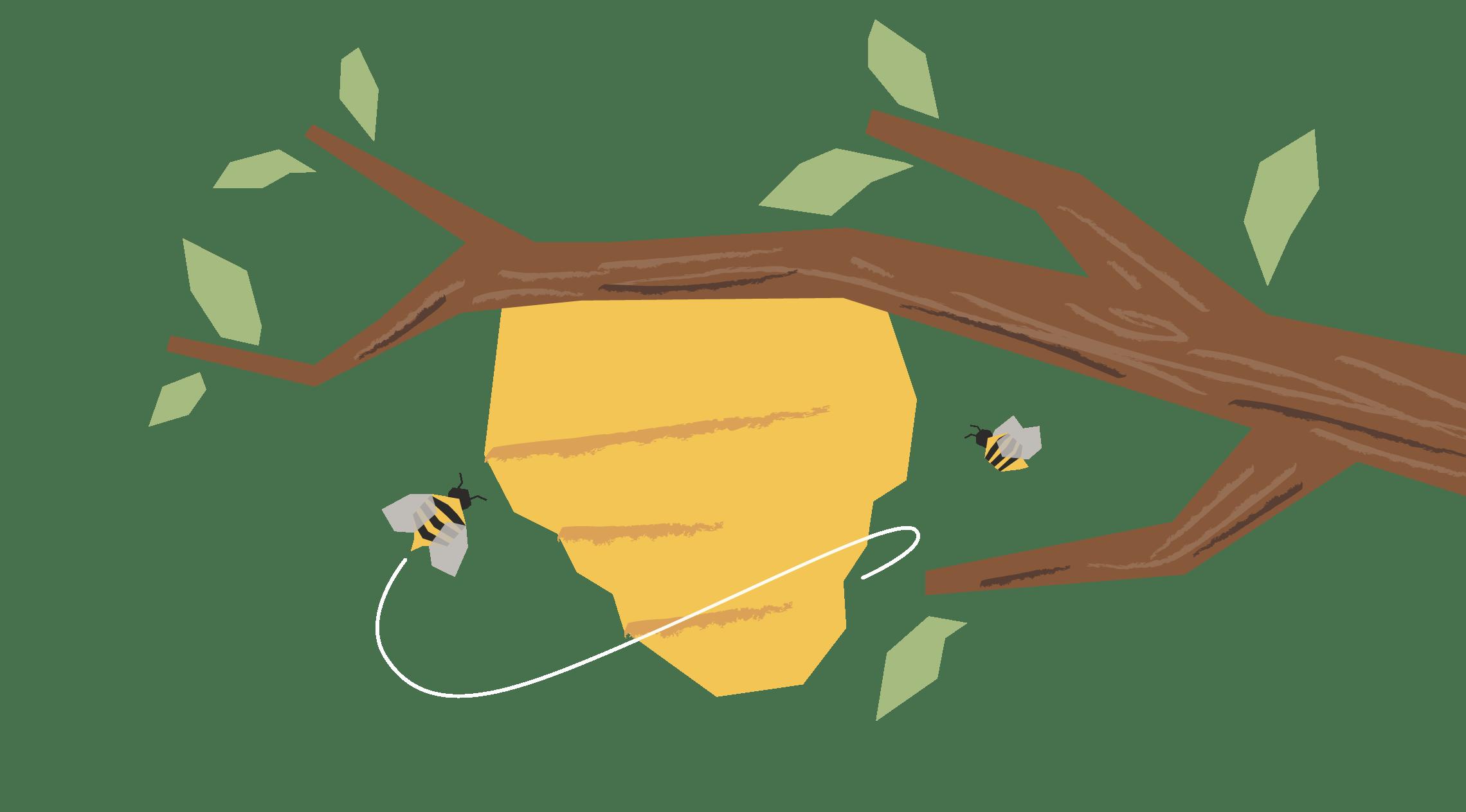 The Woods - by Mohit Rao, illustration by Akshaya Zachariah
