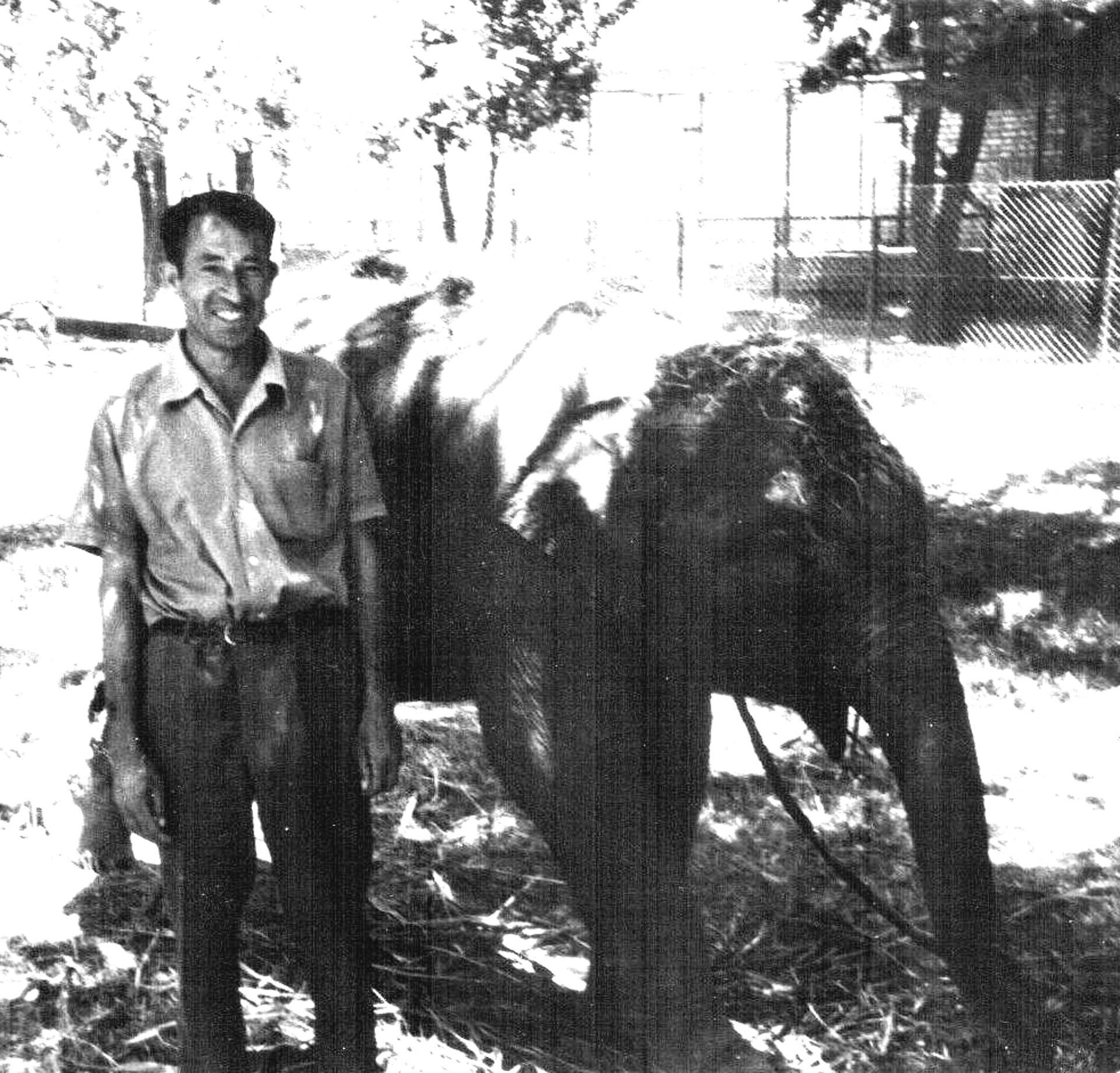Shehr Mohammad, Gunther Nogge's friend, posing with Hathi. Courtesy: Gunther Nogge