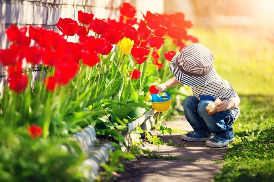 Comment aménager son jardin et le fleurir ?