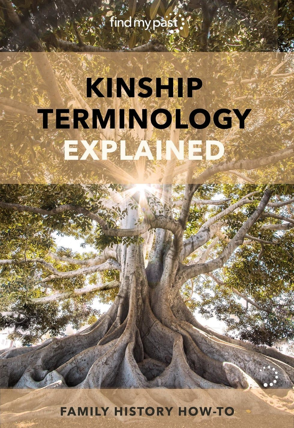 kinship-terminology-how-we-refer-to-our-family-relationships-image