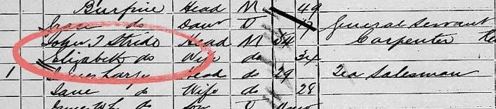 Elizabeth Stride in 1881 UK Census