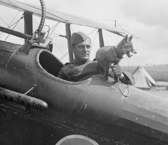 tracing-great-war-airmen-and-women-header