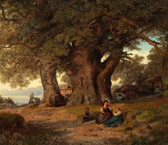 tree-builder-faqs-header