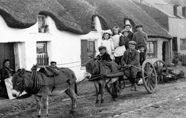 Irish tenant farmers