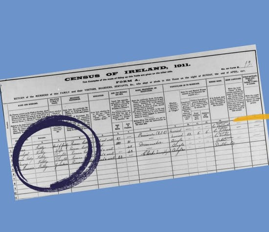 Irish census records