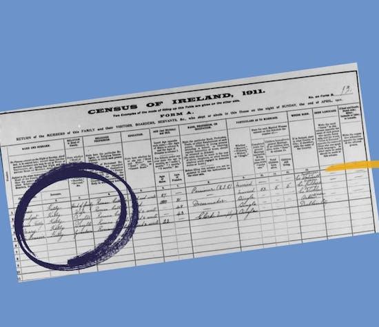 https://images.prismic.io/findmypast-titan/e9b1763a-9c31-4810-86de-54065a51e18e_irish-census.JPG?auto=compress,format&rect=67,0,702,606&w=550&h=475