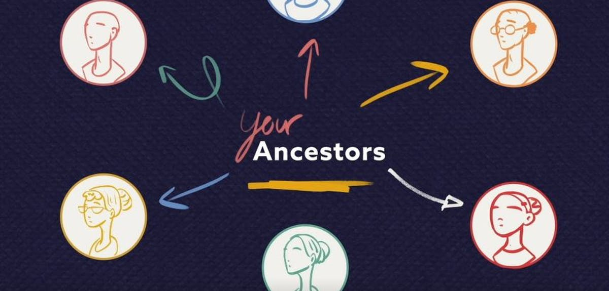 How to use the Findmypast family tree