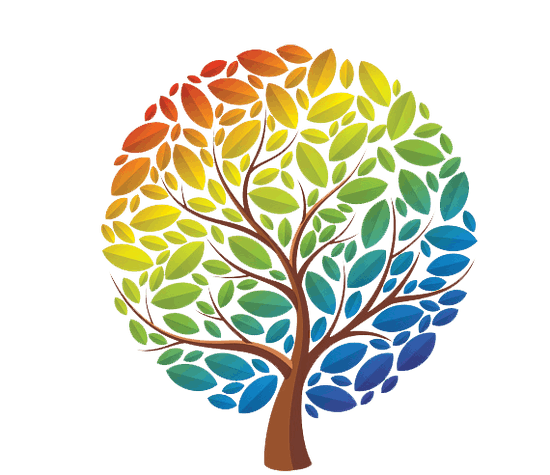 https://images.prismic.io/findmypast-titan/fe432904-c701-419b-8fc3-4d32e87a0fda_Rainbow-tree.png?auto=compress,format&rect=0,39,570,492&w=550&h=475
