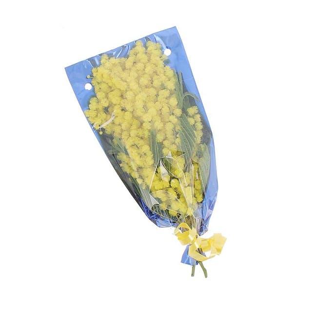 Mimosa 50gr.