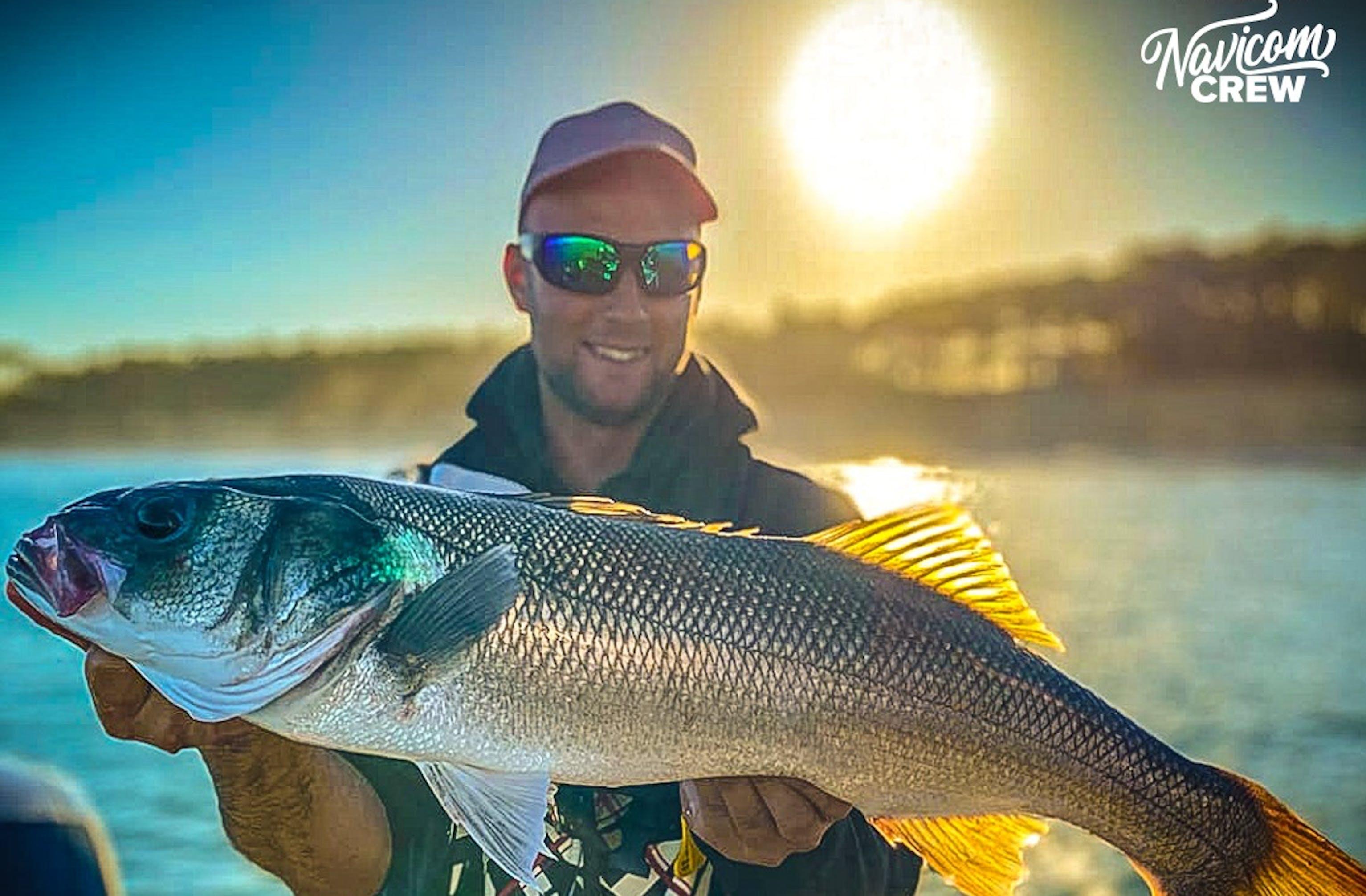 Navicom, acteur engagé pour une pêche durable