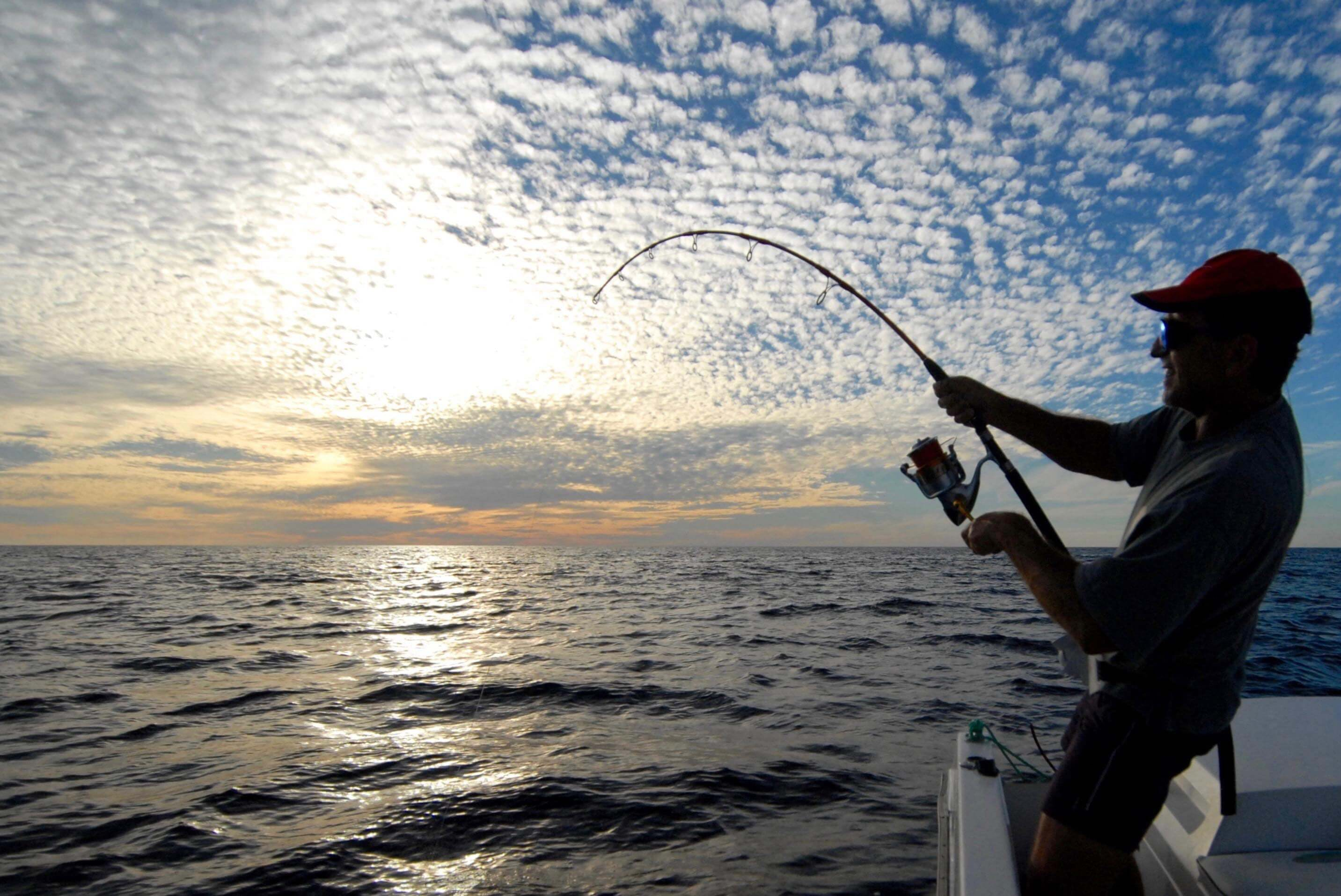 Weather conditions, statistics and analysis of your catches