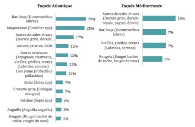 Les espèces pêchées par façade par les pêcheurs récréatifs en mer en 2020 en nombre de pêcheur déclarant avoir prélevé une espèce rapportée à la taille de population de pêcheur en France métropolitaine.