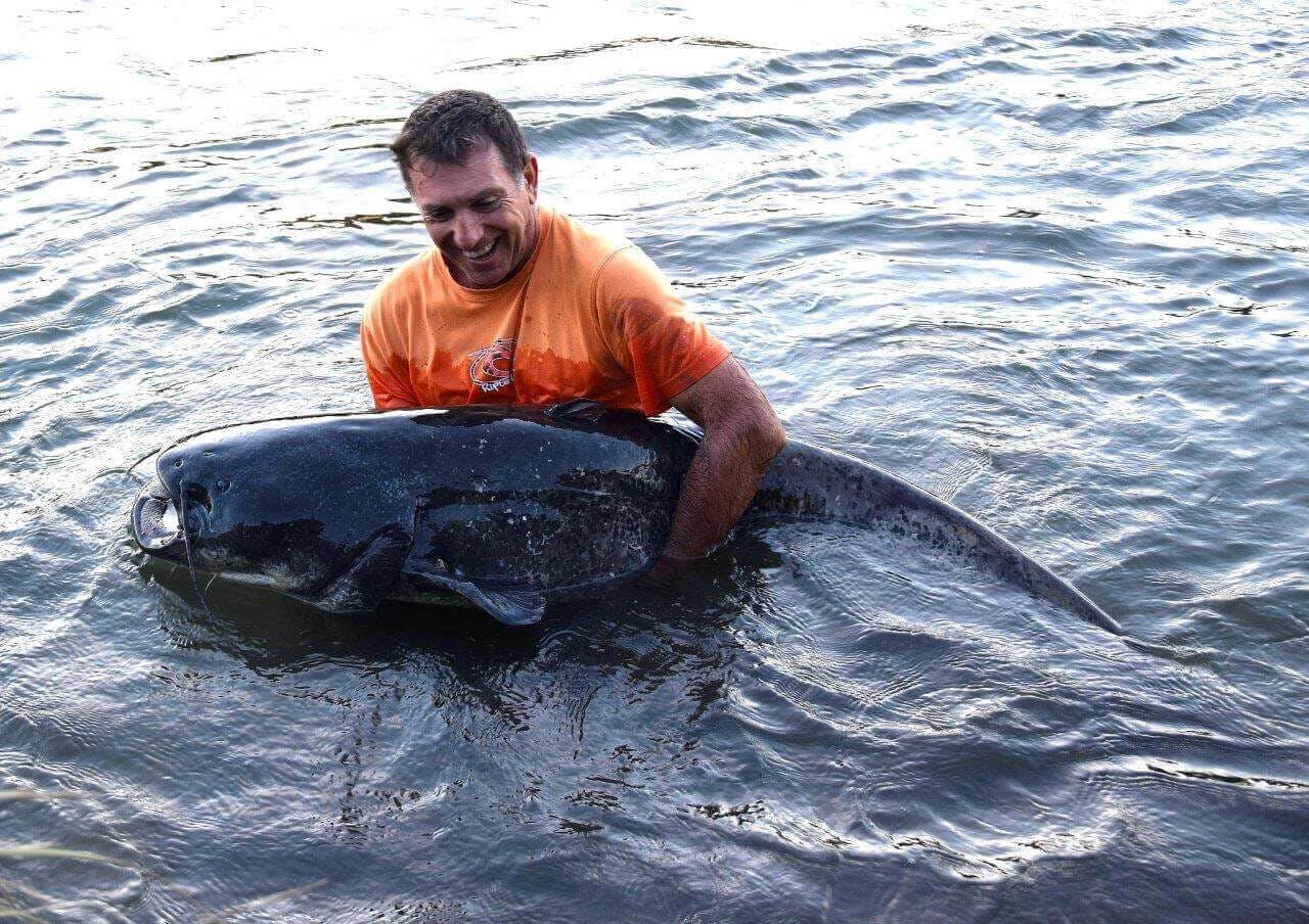Certains specimens sont si énormes qu'il ne vaut mieux pas les sortir de l'eau