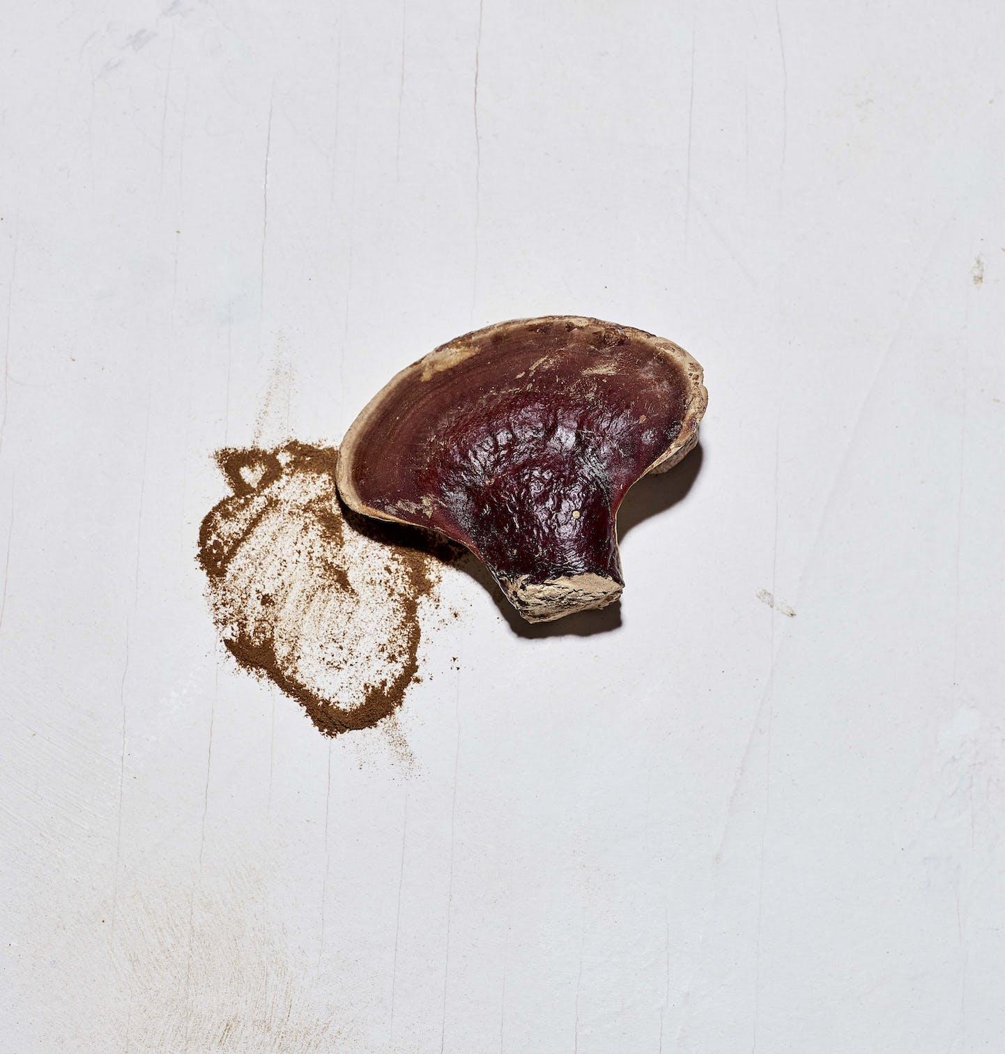 Mushroom Elixir with Reishi