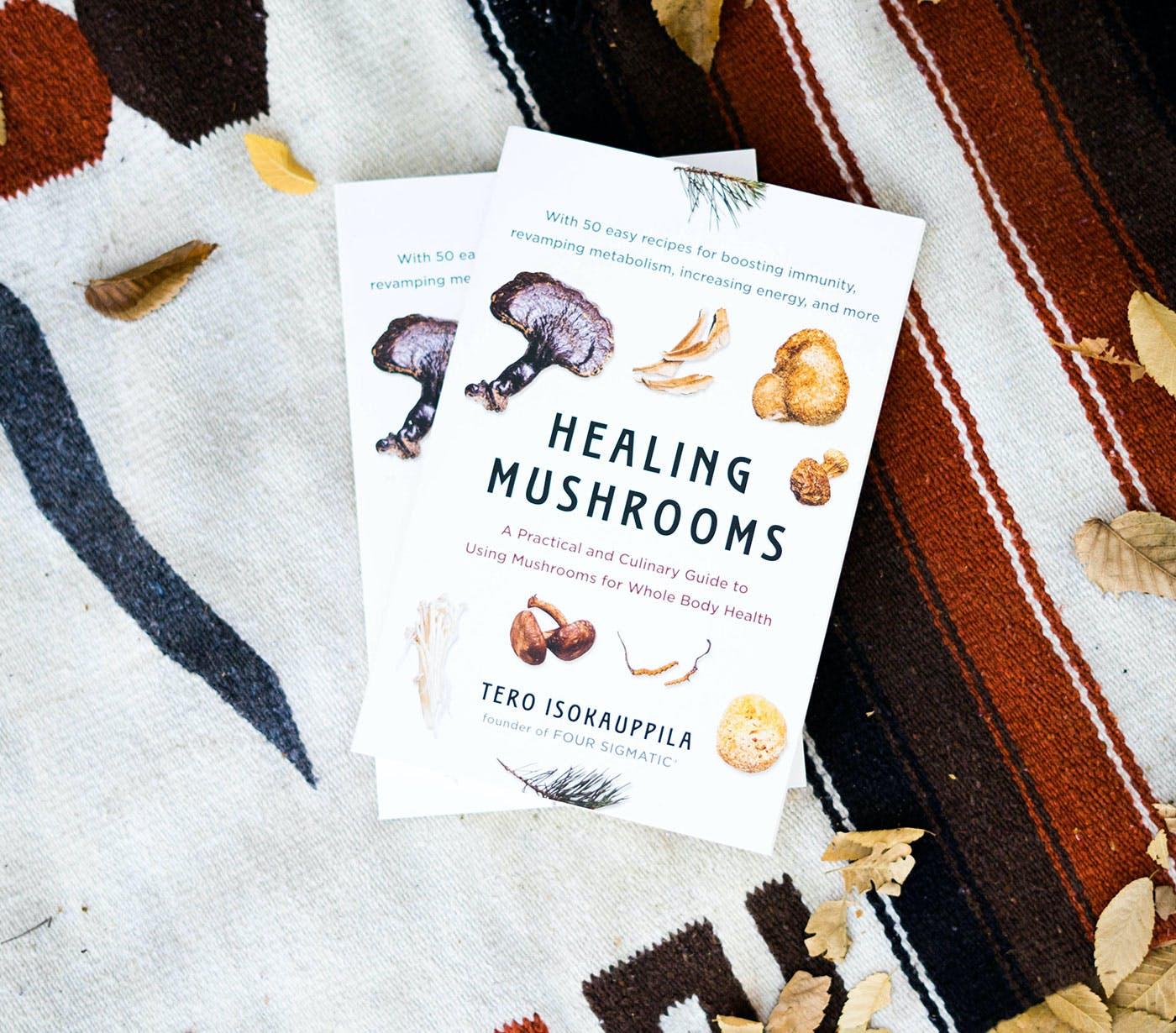 Healing mushrooms book by Tero Isokauppila
