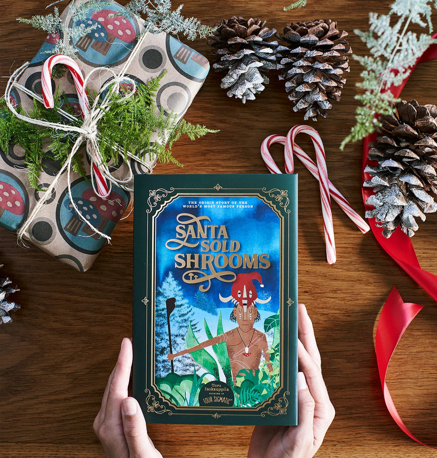 Santa Sold Shrooms Book