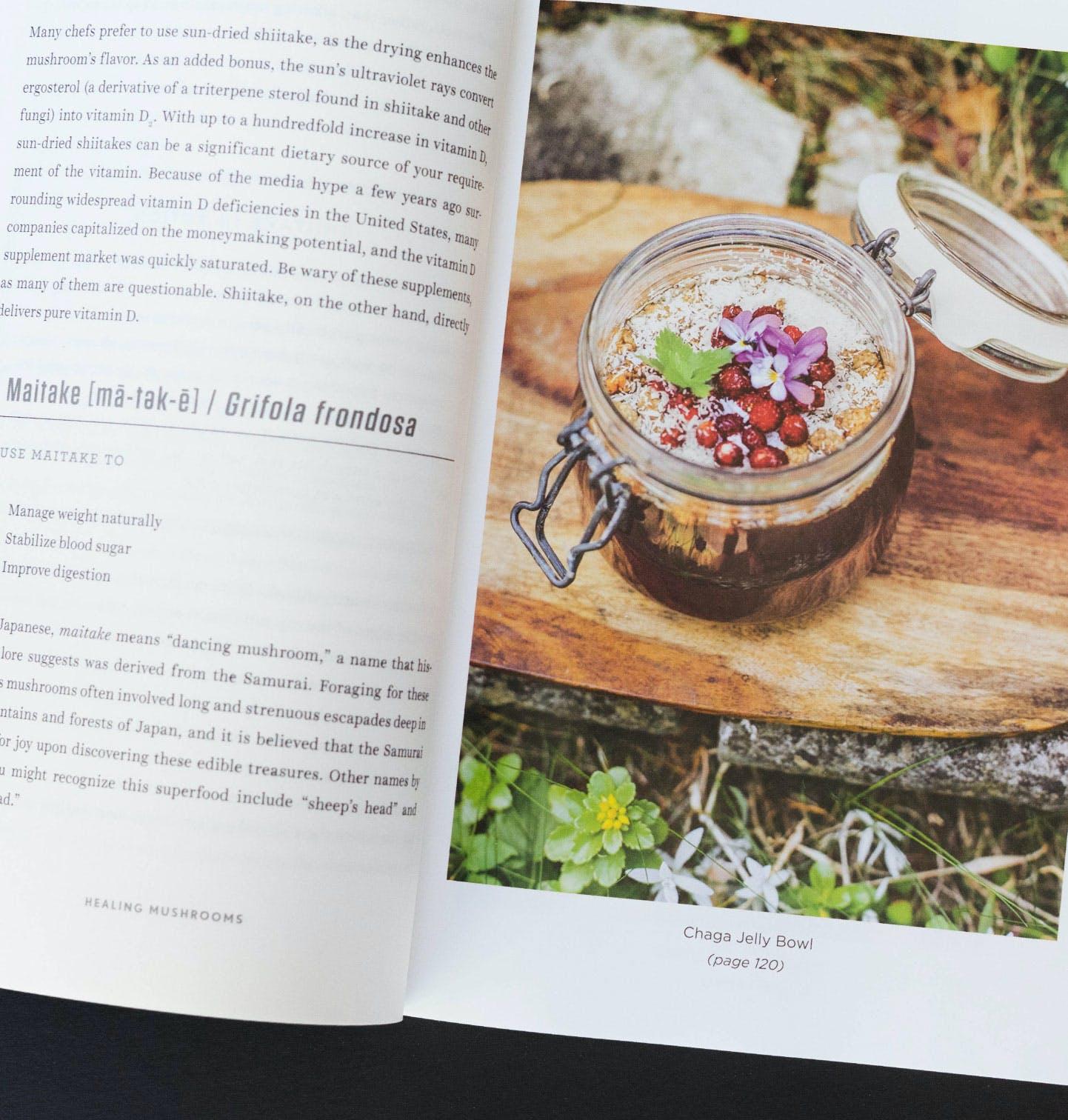 Healing Mushrooms Book