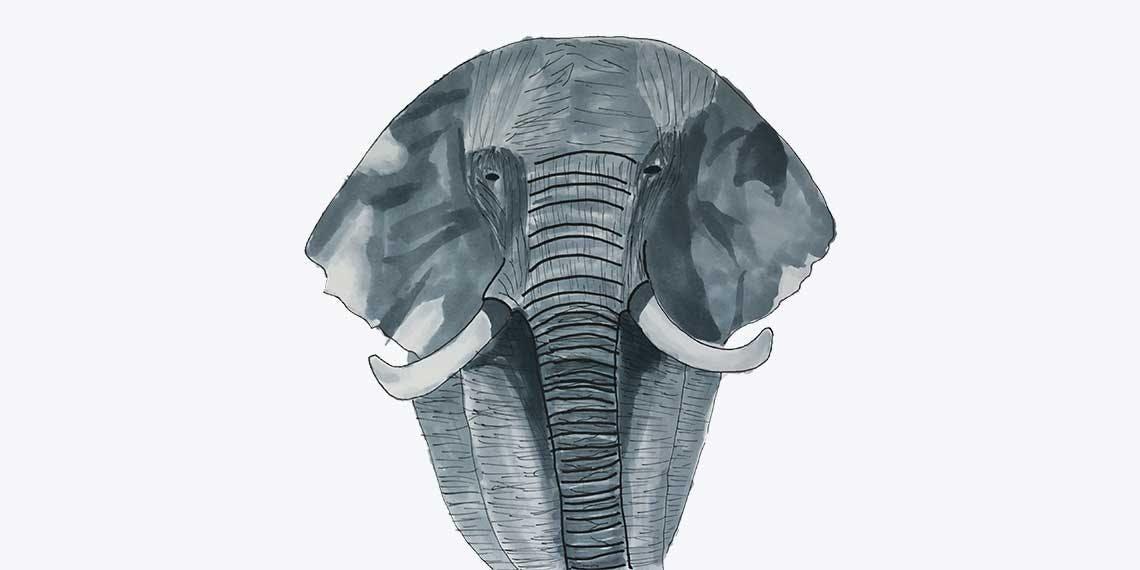 Garitma, elefante caminando de frente, dibujo marcador sobre papel