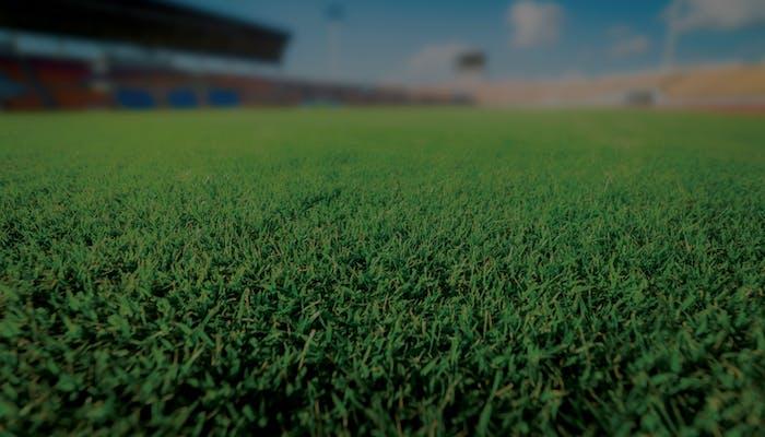 Managementul terenurilor de sport