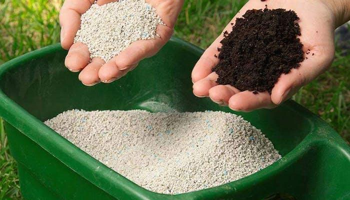 Cum se fertilizeaza gazonul