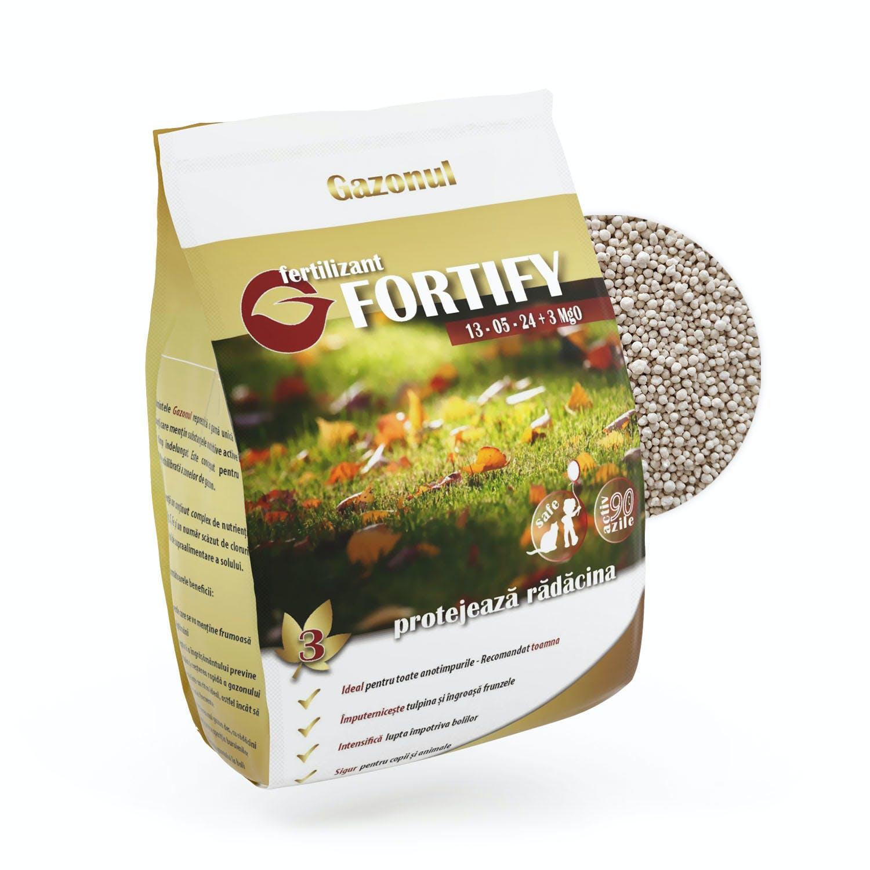 Fertilizant solid Fortify 1kg