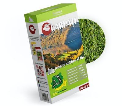 Seminte gazon Carpati