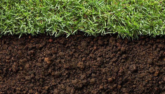 Tipuri comune de substrat de sol