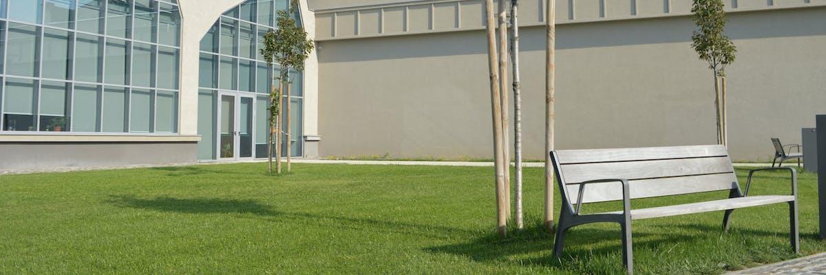 banca langa trotuar pe spatiu verde cu gazon