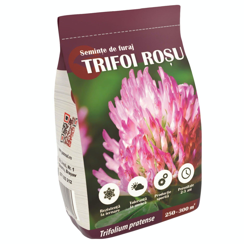 Semințe de furaje Trifoi roșu 500g