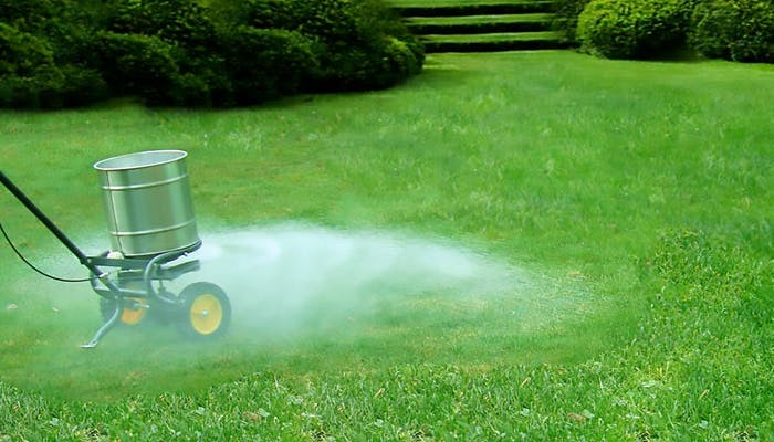 Fertilizanti pentru gazon
