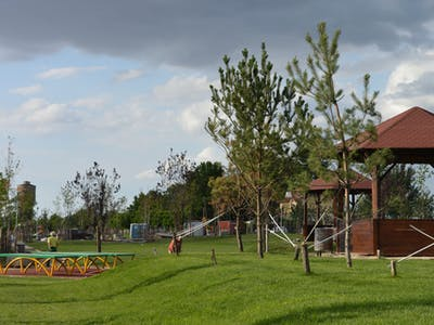Portofoliu parc public gazon