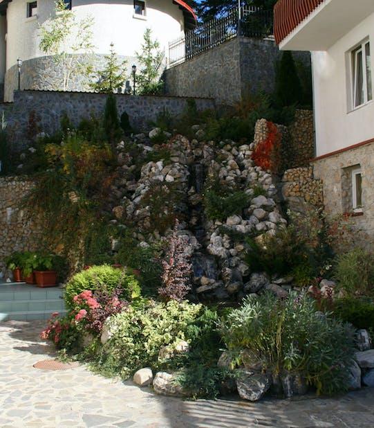 Grădină interioară cu plante perene