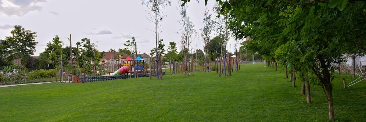 parc cu mult spatiu liber gazon arbori si loc de joaca pentru copii