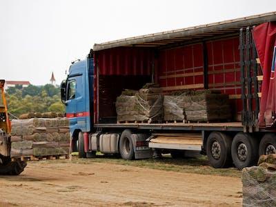 Gazonul Sercaia incarcare gazon transport