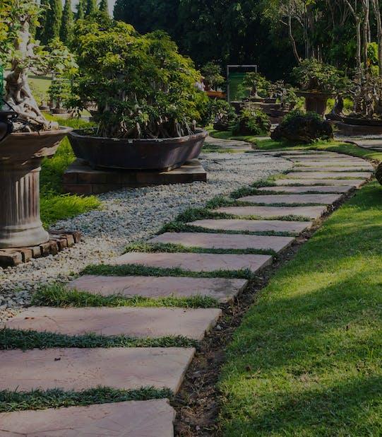 Gradina, plante, alee, elemente decorative gradina pavaj