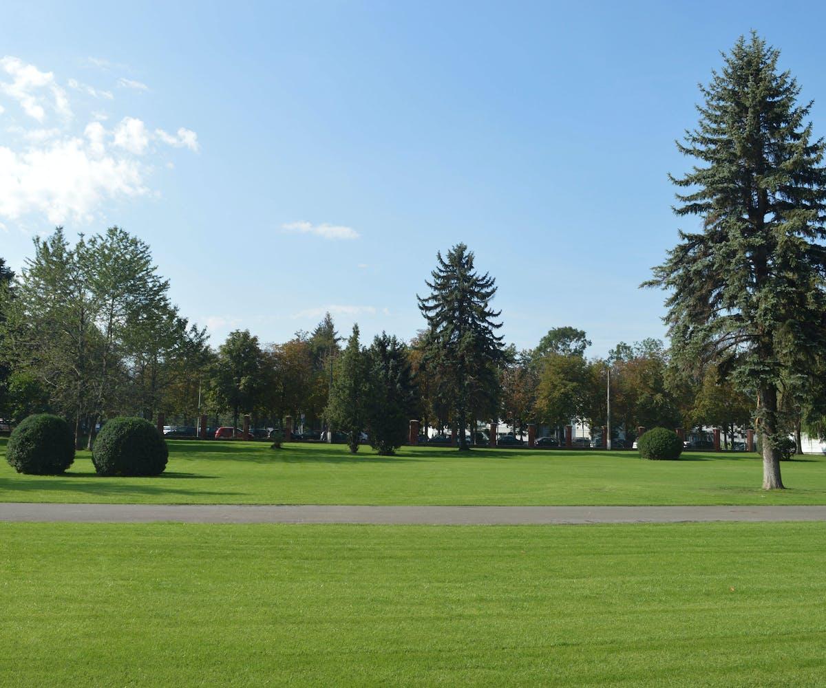 parc cu gazon si arbori mari si mult spatiu liber