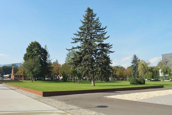 parc cu arbori si gazon