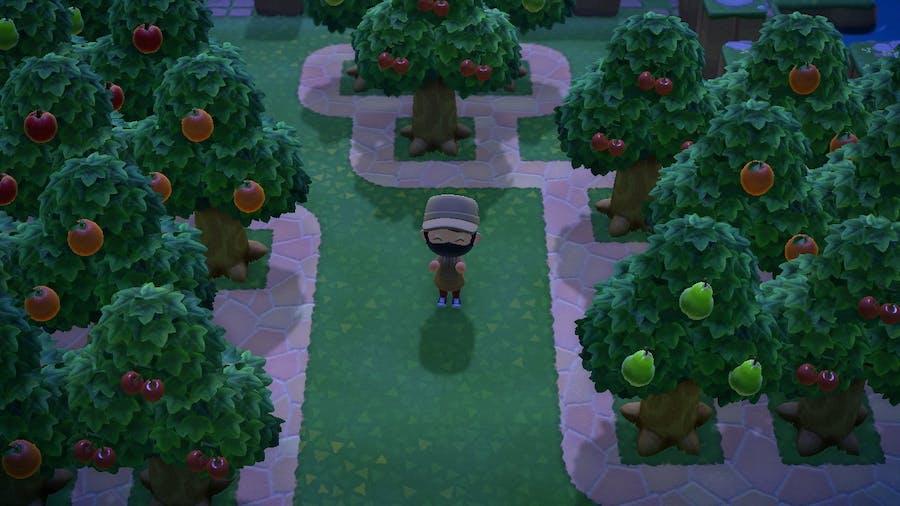Animal Crossing: New Horizons orchard on my island