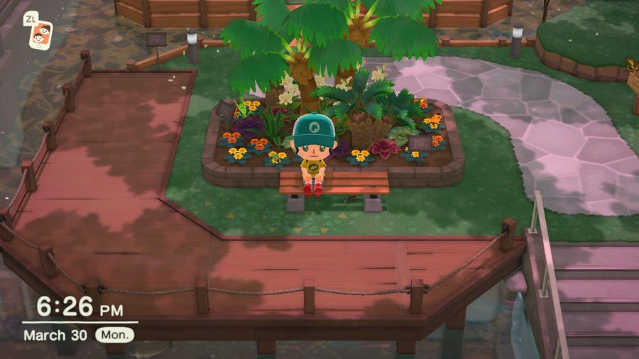 Animal Crossing: New Horizons museum bug area that you can sit