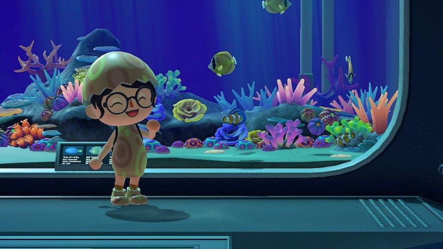 Animal Crossing: New Horizons aquarium area