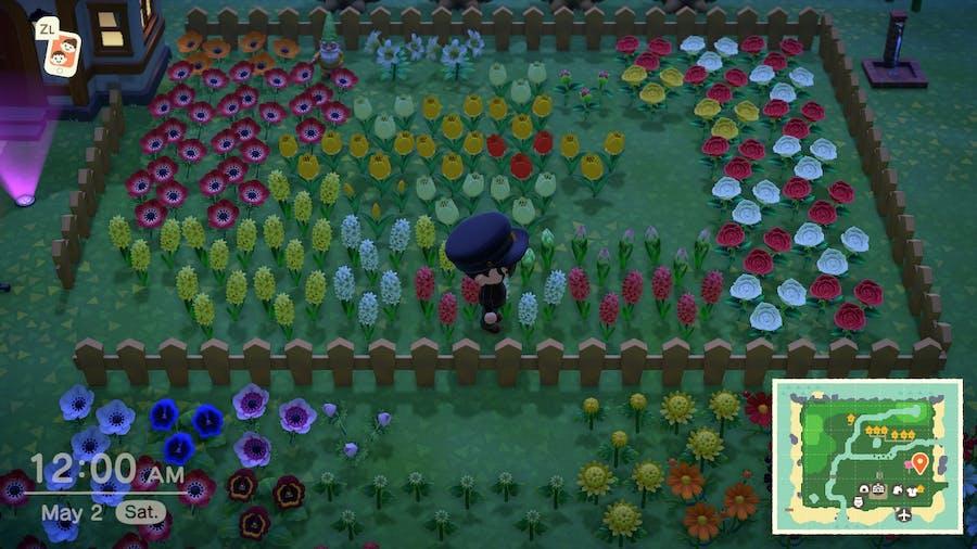 Animal Crossing: New Horizons flower field