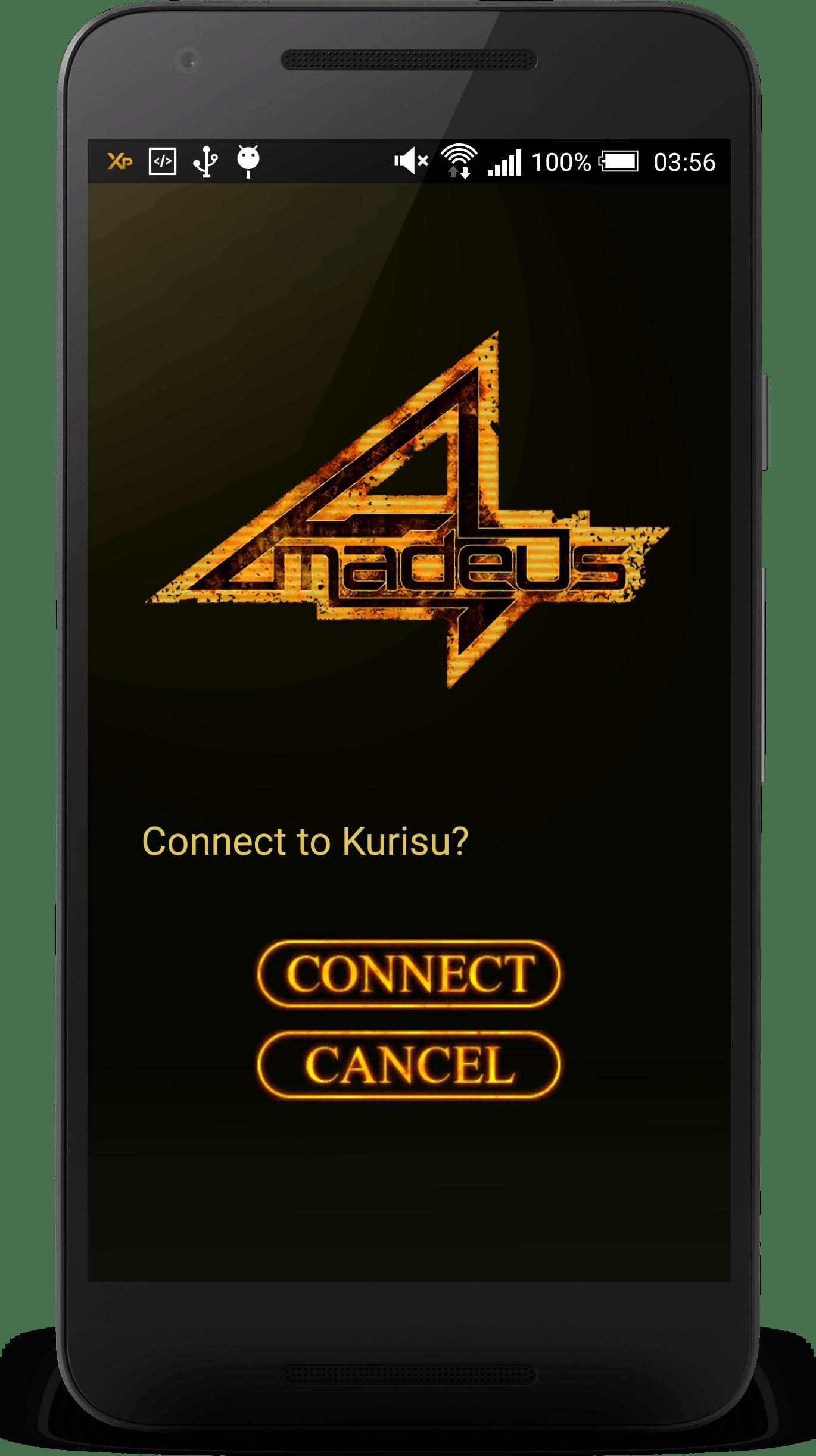 Call screen for Amadeus app.