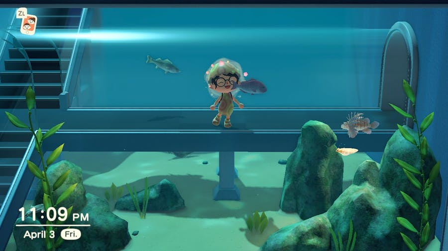 Animal Crossing: New Horizons museum aquarium area